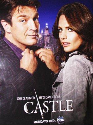 Castle 496x666