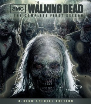 The Walking Dead 1735x2000
