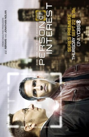 Person of Interest 334x510