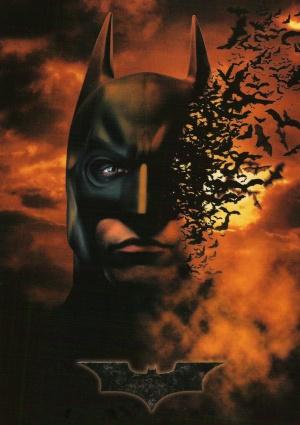 Batman Begins 1506x2132