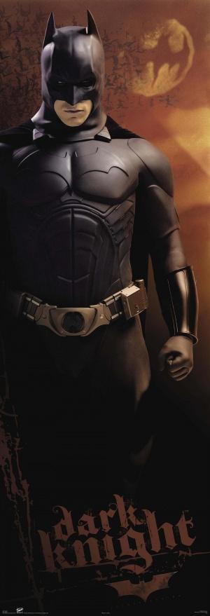 Batman Begins 1000x2929