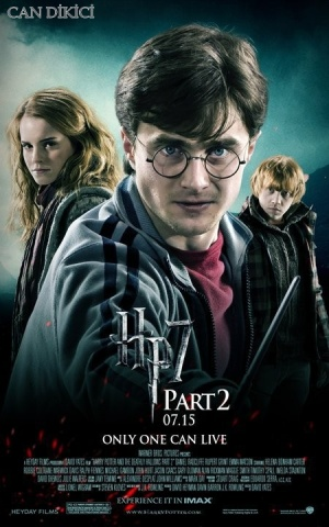 Harry Potter and the Deathly Hallows: Part 2 450x720