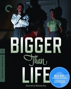 Bigger Than Life 1528x1926