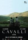 Cavalli poster