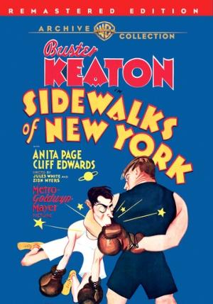 Sidewalks of New York 358x512