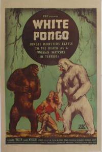 White Pongo poster