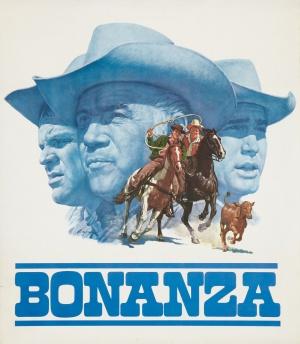 Bonanza 2424x2780