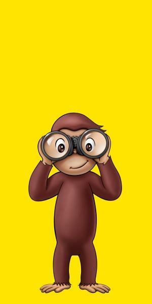 Coco - Der neugierige Affe 2495x5000