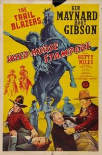 Wild Horse Stampede poster