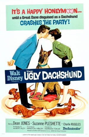 The Ugly Dachshund 1610x2466