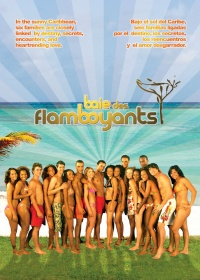 Baie des flamboyants poster