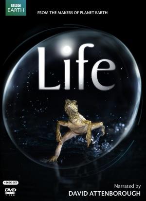 Life 1087x1497