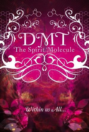 DMT: The Spirit Molecule 2430x3600