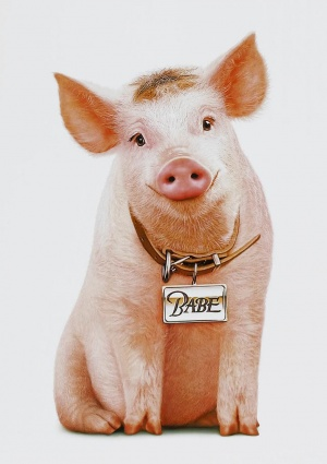 Babe: Pig in the City 948x1344
