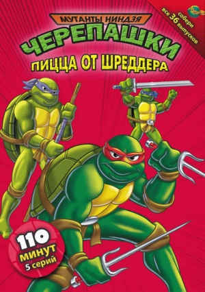 Teenage Mutant Ninja Turtles 423x600