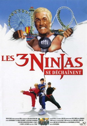 French dvd cover for 3 Ninjas: High Noon at Mega Mountain