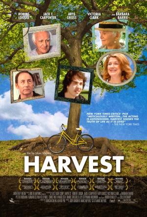 Harvest 1601x2365
