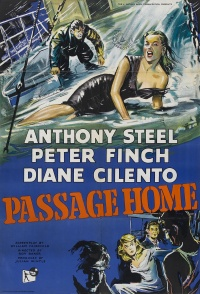 Passage Home poster