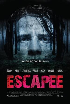 Escapee 3375x5000