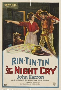 The Night Cry poster