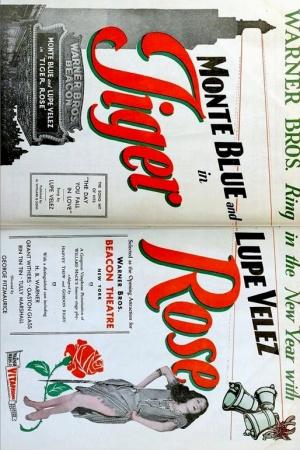 Rosa tigrata 514x771