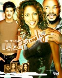 Like Family poster
