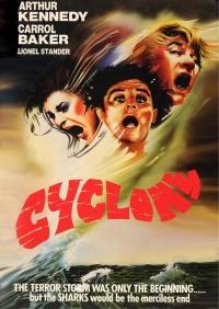 Terror Storm poster