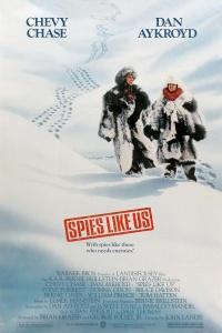 Spione wie wir poster