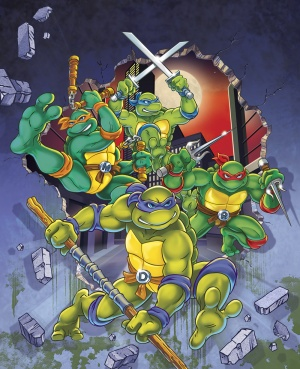 Teenage Mutant Hero Turtles 1000x1231