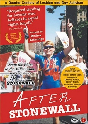 After Stonewall 353x498