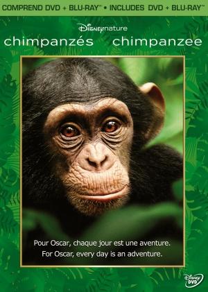 Chimpanzee 1621x2275