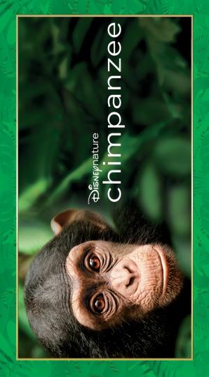 Oscar, a csimpánz 720x1296