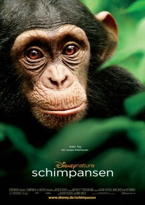 Chimpanzee 2384x3370