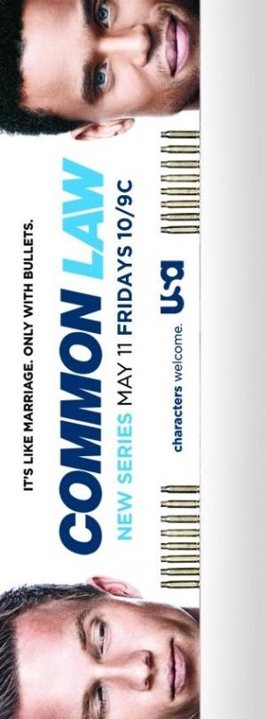 Common Law 315x851
