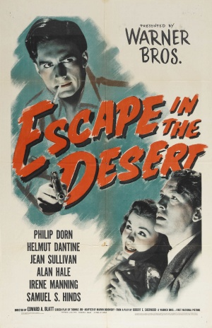 Escape in the Desert Poster