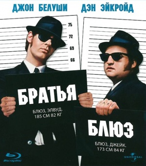 The Blues Brothers 579x656