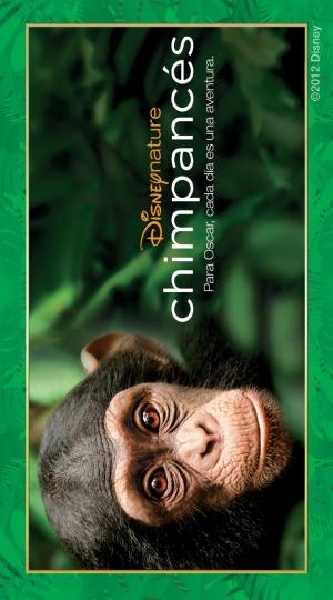 Chimpanzee 720x1296