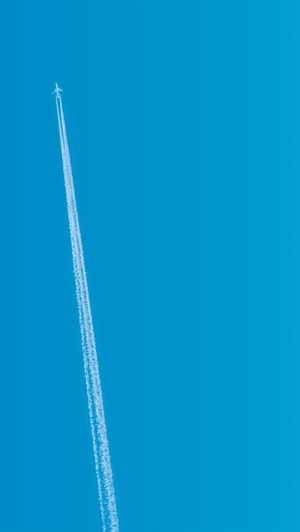 Flight 2817x5000
