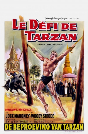 Tarzan's Three Challenges 1700x2590