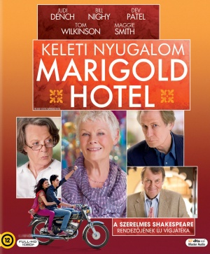 The Best Exotic Marigold Hotel 1564x1893