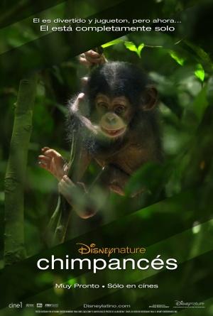 Chimpanzee 1595x2367