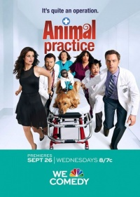 Animal Practice poster