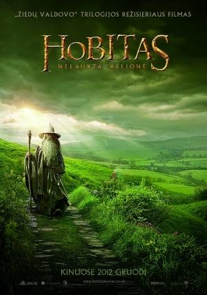 The Hobbit: An Unexpected Journey 500x714
