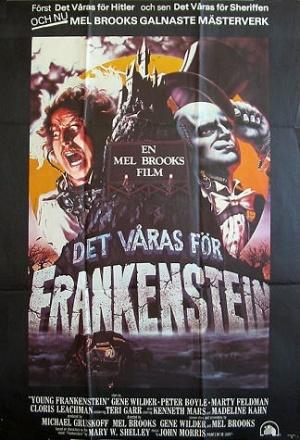 Young Frankenstein 324x475