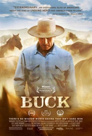 Buck 3384x5000
