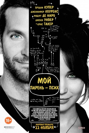 Silver Linings Playbook 3333x5000