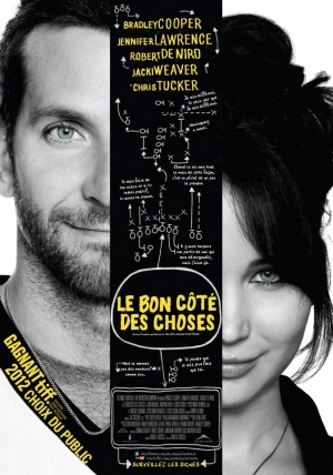 Silver Linings Playbook 673x960