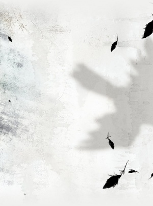 The Raven 618x832