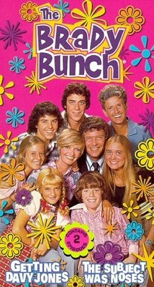 The Brady Bunch 300x559