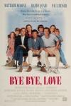 Bye Bye Love poster